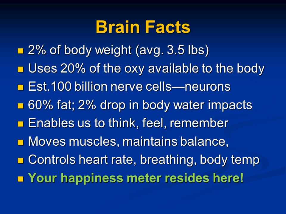 Brain Facts 2% of body weight (avg. 3.5 lbs) 2% of body weight (avg.