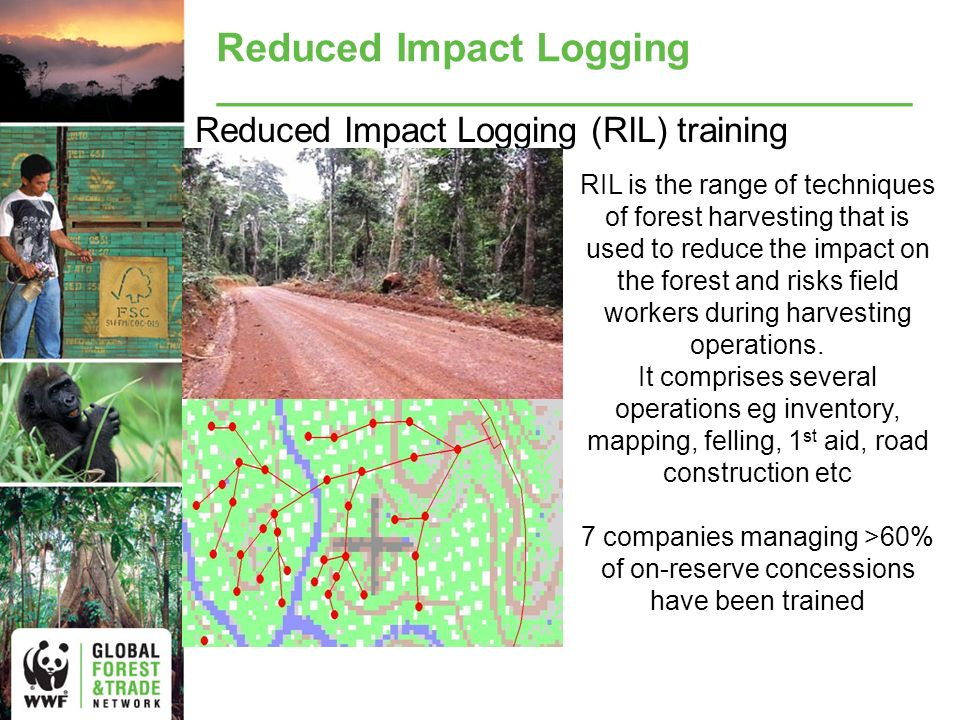 Reduced Impact Logging Reduced Impact Logging (RIL) training RIL is the range of techniques of forest harvesting that is used to reduce the impact on the forest and risks field workers during harvesting operations.