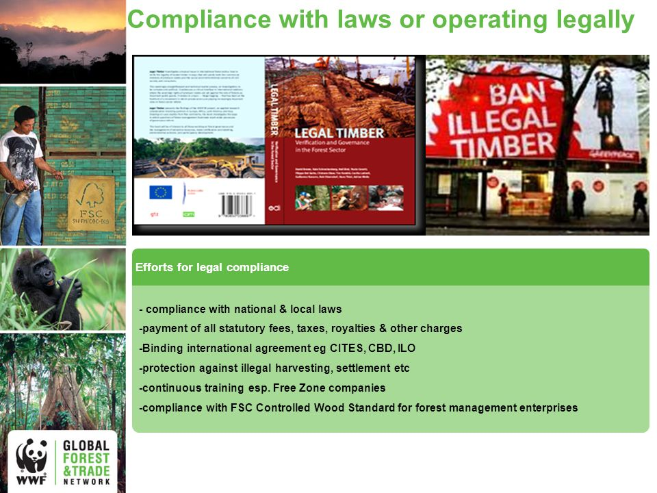 Compliance with laws or operating legally Efforts for legal compliance - compliance with national & local laws -payment of all statutory fees, taxes, royalties & other charges -Binding international agreement eg CITES, CBD, ILO -protection against illegal harvesting, settlement etc -continuous training esp.