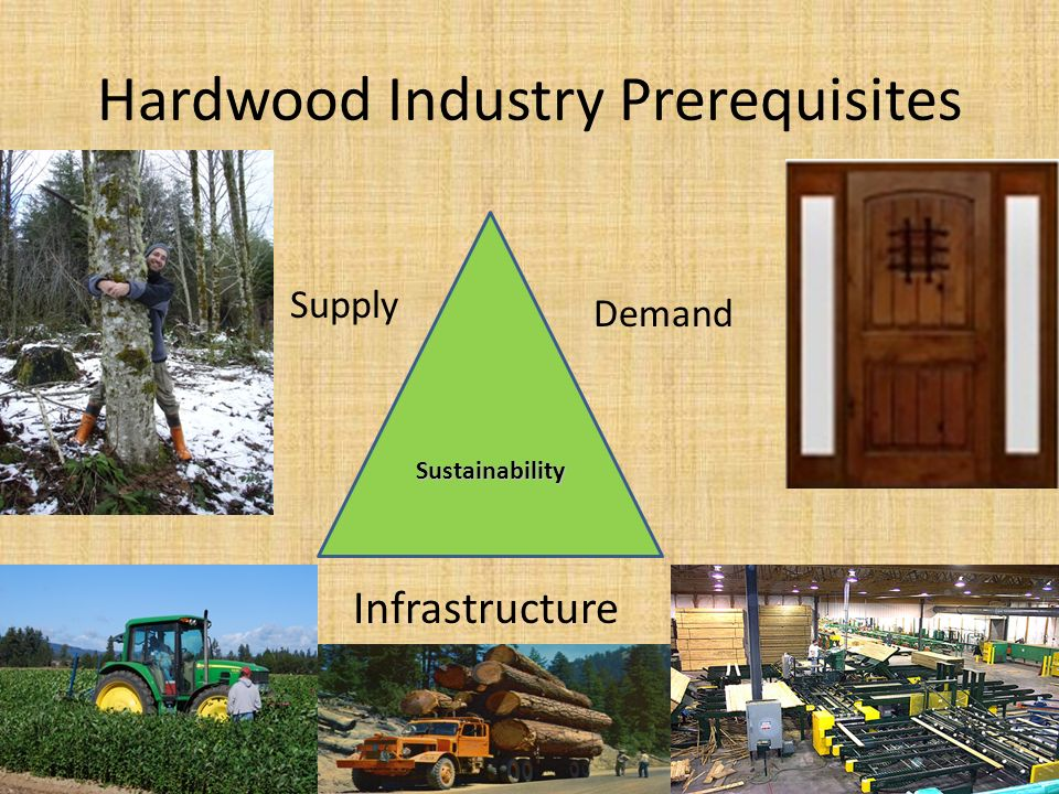 Hardwood Industry Prerequisites Sustainability Supply Demand Infrastructure