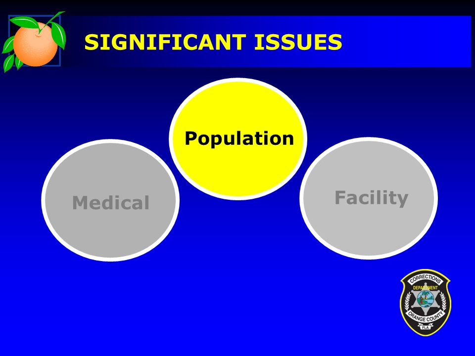 SIGNIFICANT ISSUES Facility Medical Population