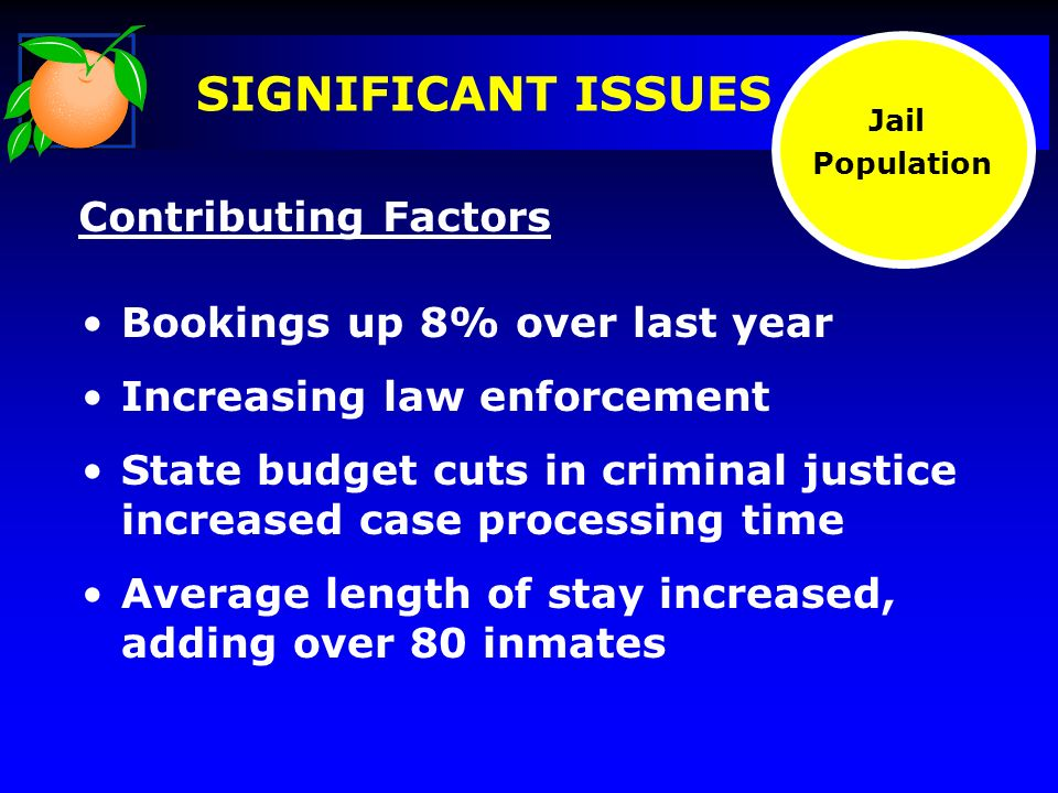Bookings up 8% over last year Increasing law enforcement State budget cuts in criminal justice increased case processing time Average length of stay increased, adding over 80 inmates Contributing Factors Jail Population SIGNIFICANT ISSUES