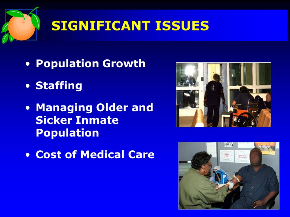SIGNIFICANT ISSUES Population Growth Staffing Managing Older and Sicker Inmate Population Cost of Medical Care Pictures
