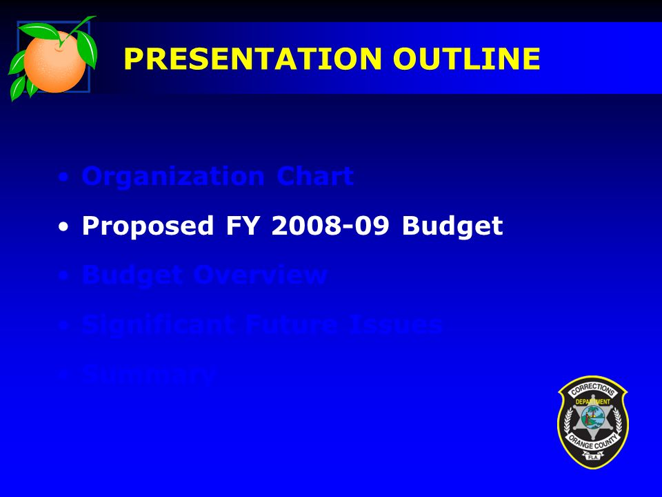 Organization Chart Proposed FY Budget Budget Overview Significant Future Issues Summary PRESENTATION OUTLINE