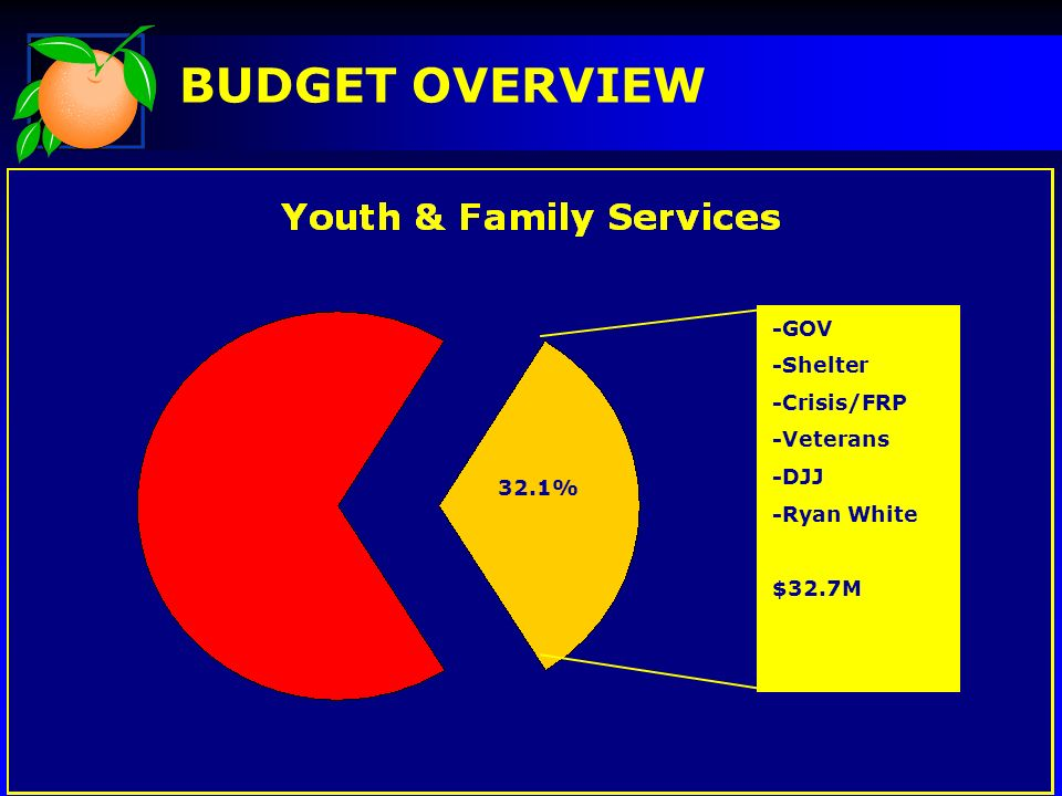 BUDGET OVERVIEW -GOV -Shelter -Crisis/FRP -Veterans -DJJ -Ryan White $32.7M 32.1%