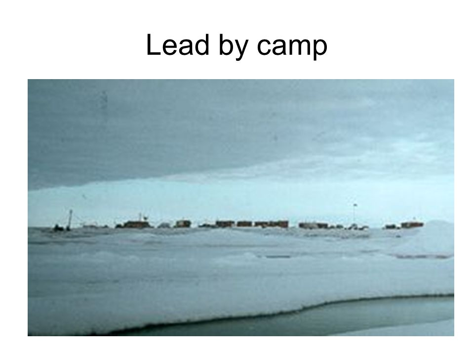 Lead by camp