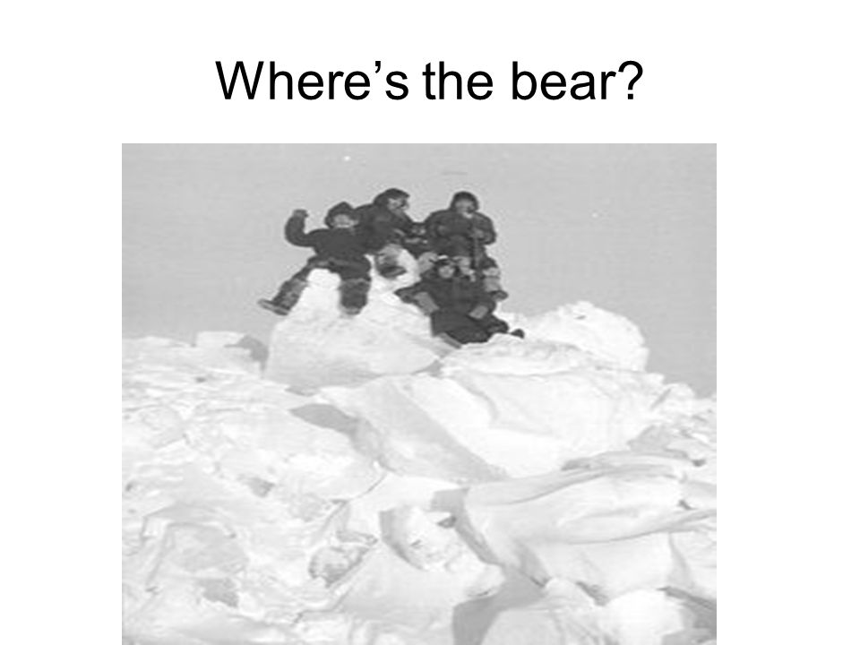 Wheres the bear