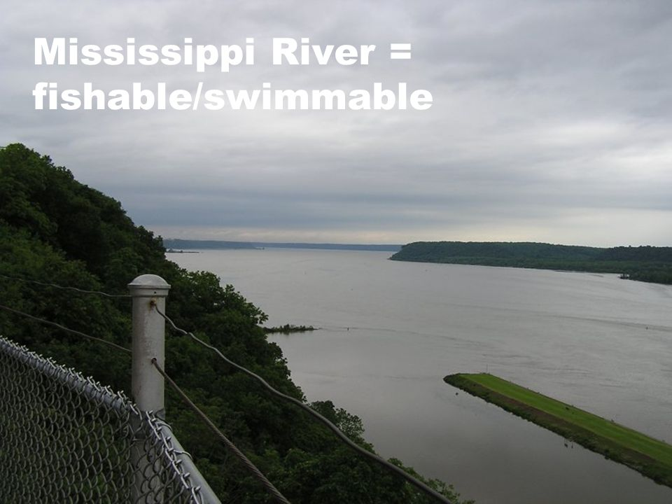 Mississippi River = fishable/swimmable