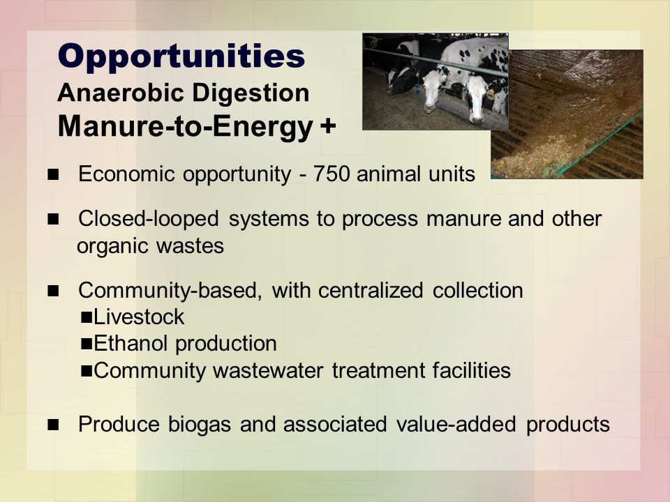 Opportunities Anaerobic Digestion Manure-to-Energy + Economic opportunity - 750 animal units Closed-looped systems to process manure and other organic wastes Community-based, with centralized collection Livestock Ethanol production Community wastewater treatment facilities Produce biogas and associated value-added products