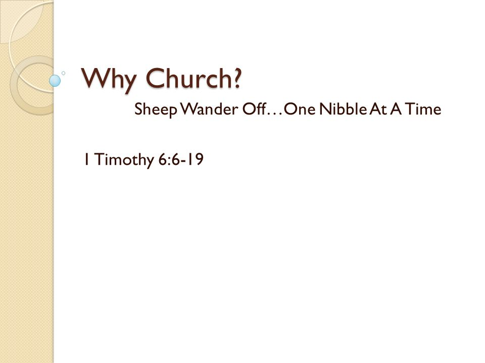 Why Church Sheep Wander Off…One Nibble At A Time 1 Timothy 6:6-19