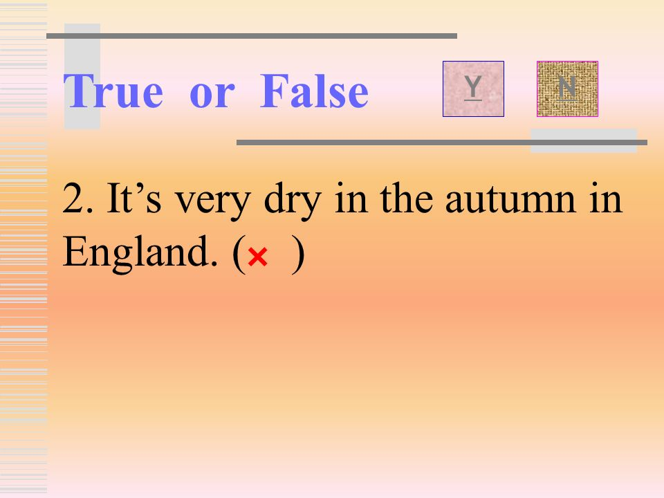 True or False 1.The hurricane happened in the day. ( ) × YN