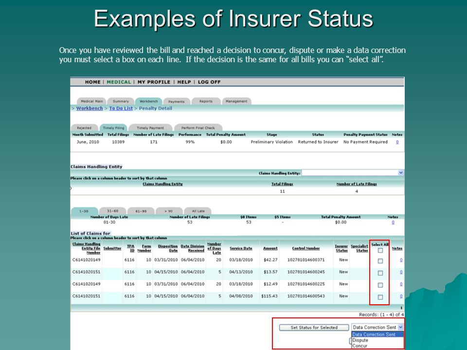 Examples of Insurer Status Once you have reviewed the bill and reached a decision to concur, dispute or make a data correction you must select a box on each line.