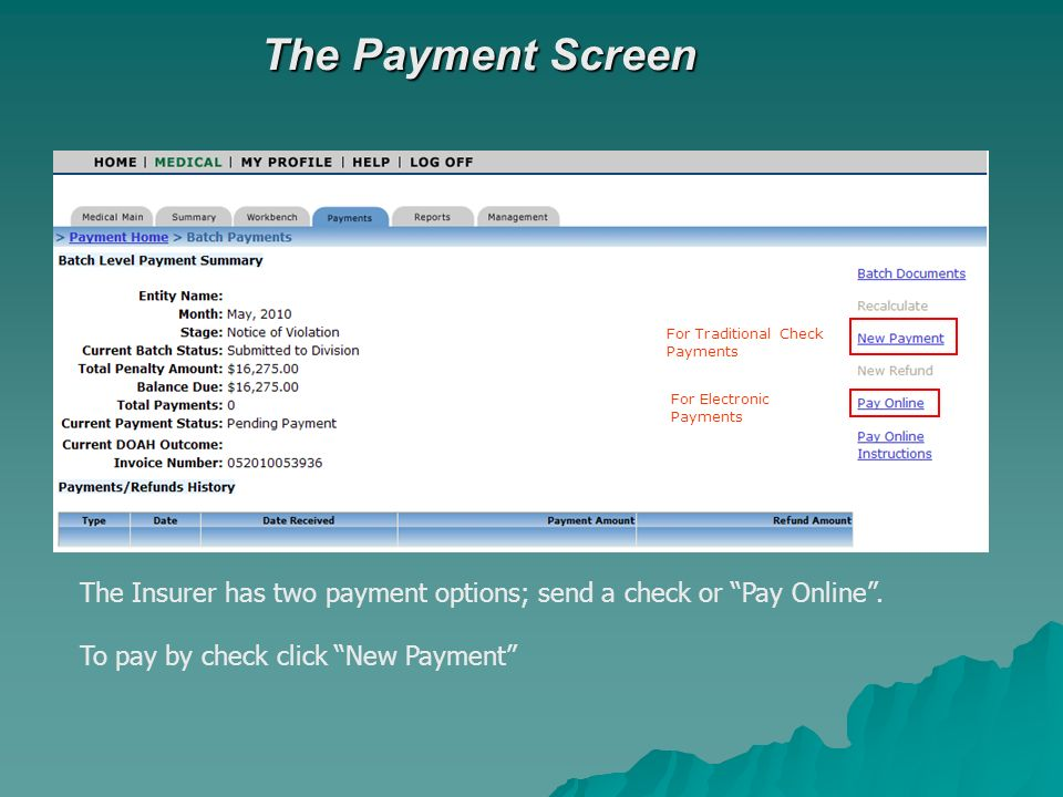 The Payment Screen The Insurer has two payment options; send a check or Pay Online.