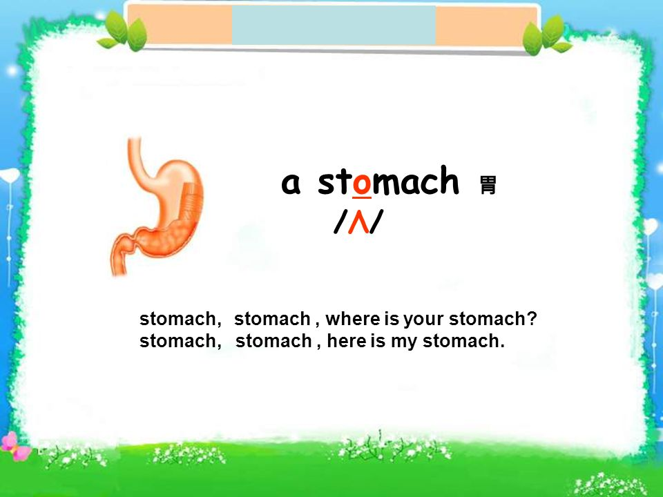 a stomach /Λ//Λ/ stomach, stomach, where is your stomach stomach, stomach, here is my stomach.