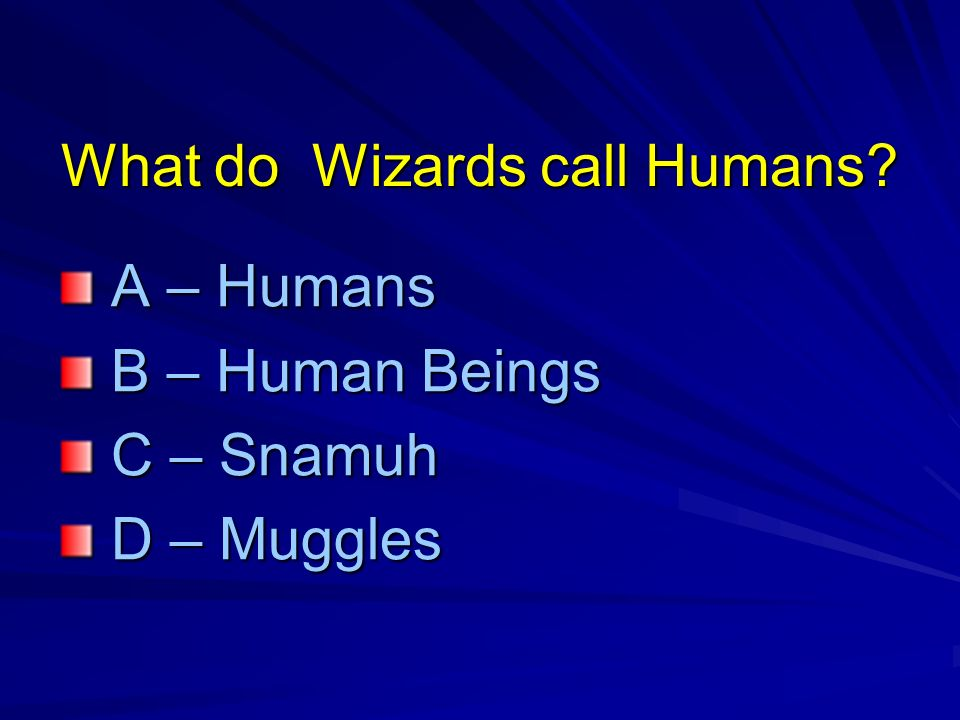What do Wizards call Humans.