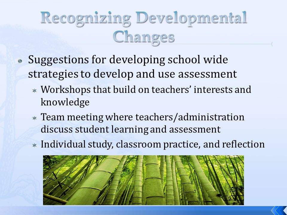 Suggestions for developing school wide strategies to develop and use assessment Workshops that build on teachers interests and knowledge Team meeting where teachers/administration discuss student learning and assessment Individual study, classroom practice, and reflection