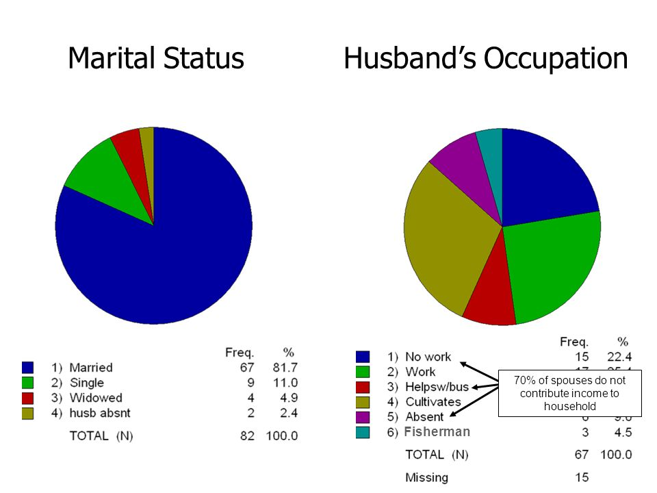 Marital StatusHusbands Occupation Fisherman 70% of spouses do not contribute income to household