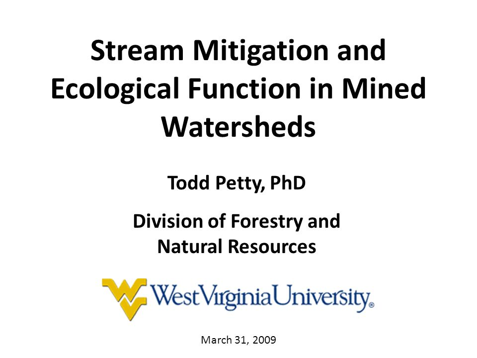 Stream Mitigation and Ecological Function in Mined Watersheds Todd Petty, PhD Division of Forestry and Natural Resources March 31, 2009