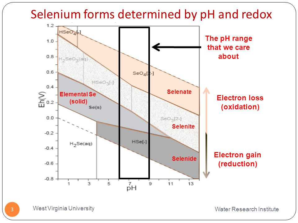 Selenium forms determined by pH and redox Water Research Institute West Virginia University 3 The pH range that we care about Selenate Selenite Selenide Elemental Se (solid) Electron gain (reduction) Electron loss (oxidation)