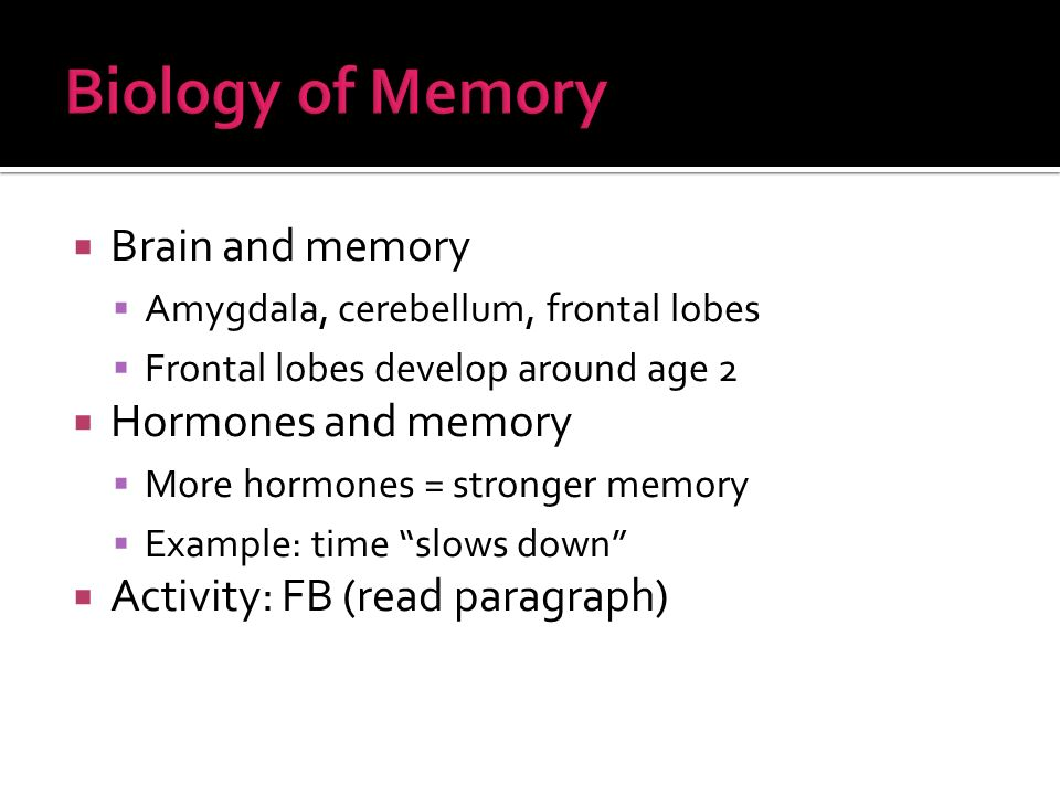 Brain and memory Amygdala, cerebellum, frontal lobes Frontal lobes develop around age 2 Hormones and memory More hormones = stronger memory Example: time slows down Activity: FB (read paragraph)