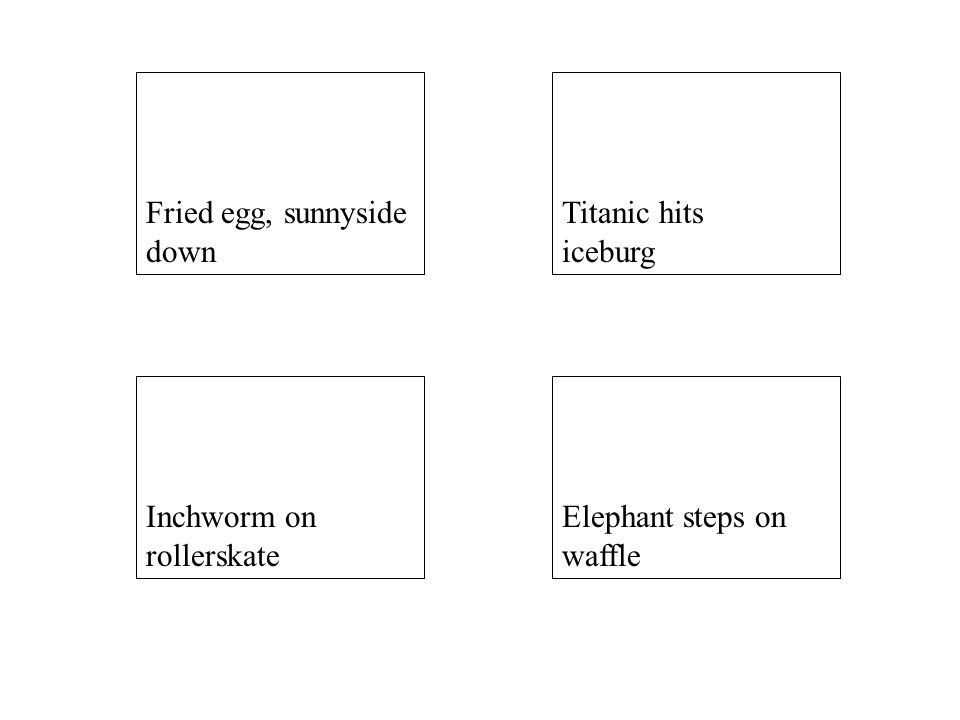 Elephant steps on waffle Inchworm on rollerskate Titanic hits iceburg Fried egg, sunnyside down
