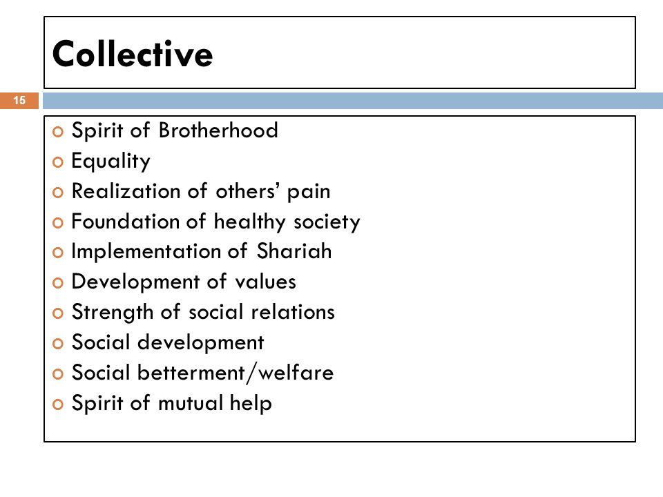 Collective 15 Spirit of Brotherhood Equality Realization of others pain Foundation of healthy society Implementation of Shariah Development of values Strength of social relations Social development Social betterment/welfare Spirit of mutual help