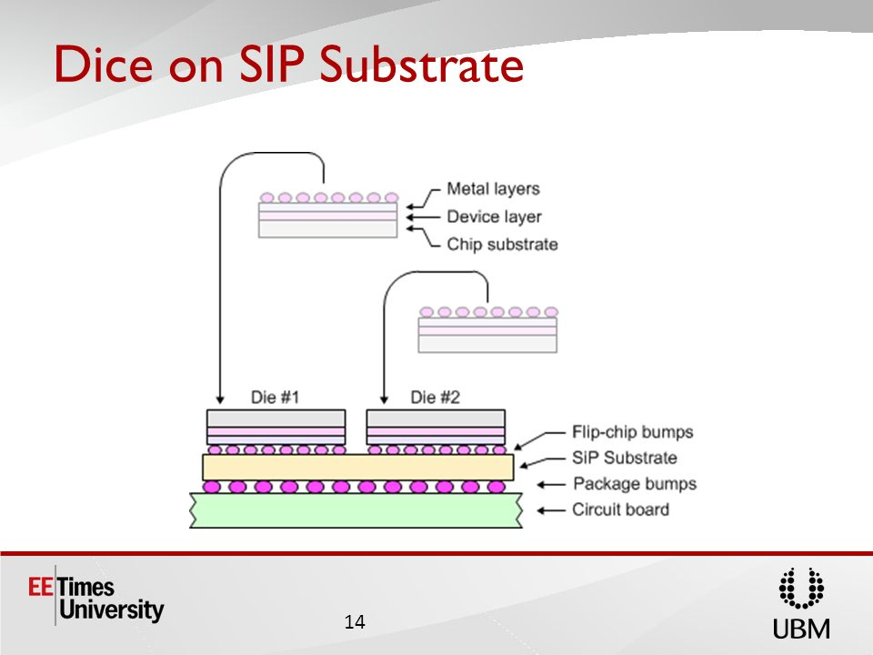 Dice on SIP Substrate 14