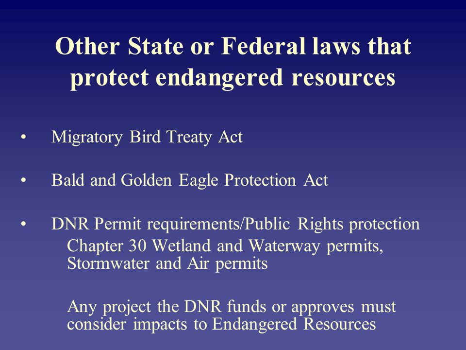 Other State or Federal laws that protect endangered resources Migratory Bird Treaty Act Bald and Golden Eagle Protection Act DNR Permit requirements/Public Rights protection Chapter 30 Wetland and Waterway permits, Stormwater and Air permits Any project the DNR funds or approves must consider impacts to Endangered Resources