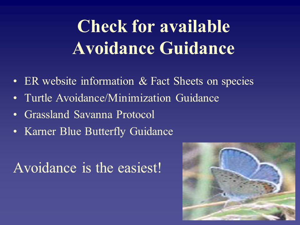 Check for available Avoidance Guidance ER website information & Fact Sheets on species Turtle Avoidance/Minimization Guidance Grassland Savanna Protocol Karner Blue Butterfly Guidance Avoidance is the easiest!