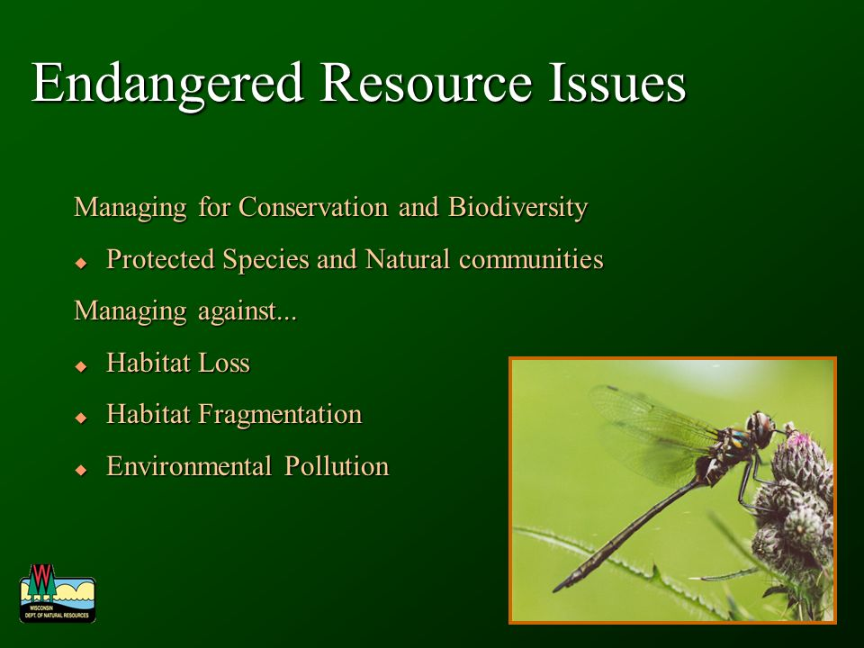 Endangered Resource Issues Managing for Conservation and Biodiversity Protected Species and Natural communities Protected Species and Natural communities Managing against...