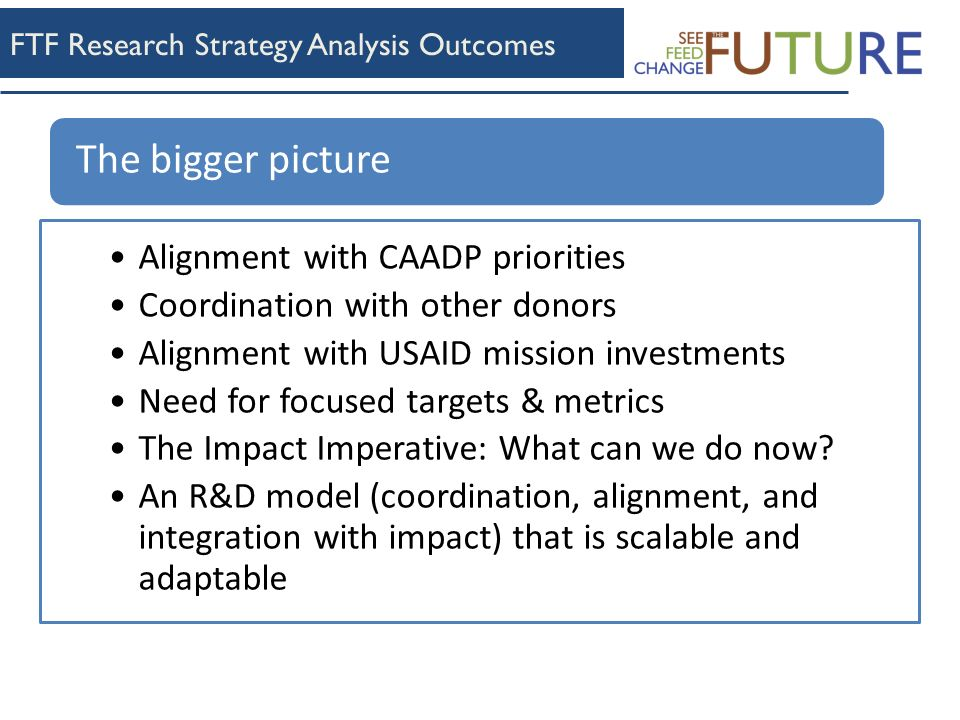 FTF Research Strategy Analysis Outcomes Alignment with CAADP priorities Coordination with other donors Alignment with USAID mission investments Need for focused targets & metrics The Impact Imperative: What can we do now.