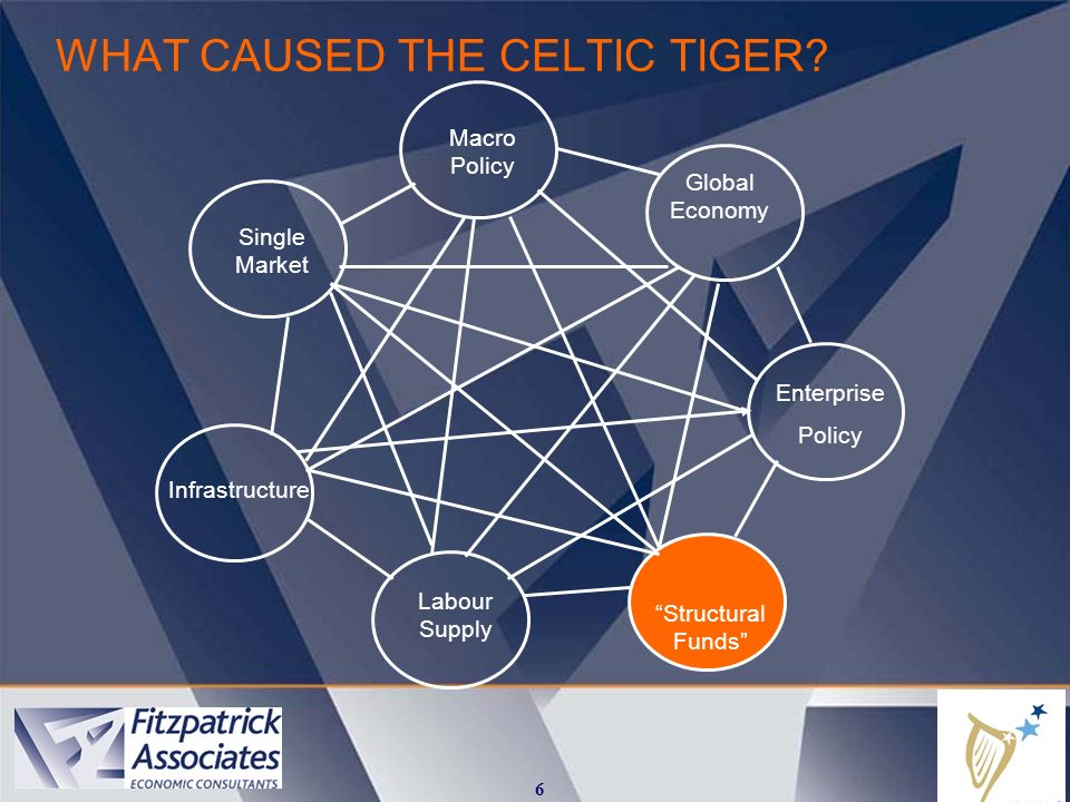 WHAT CAUSED THE CELTIC TIGER.