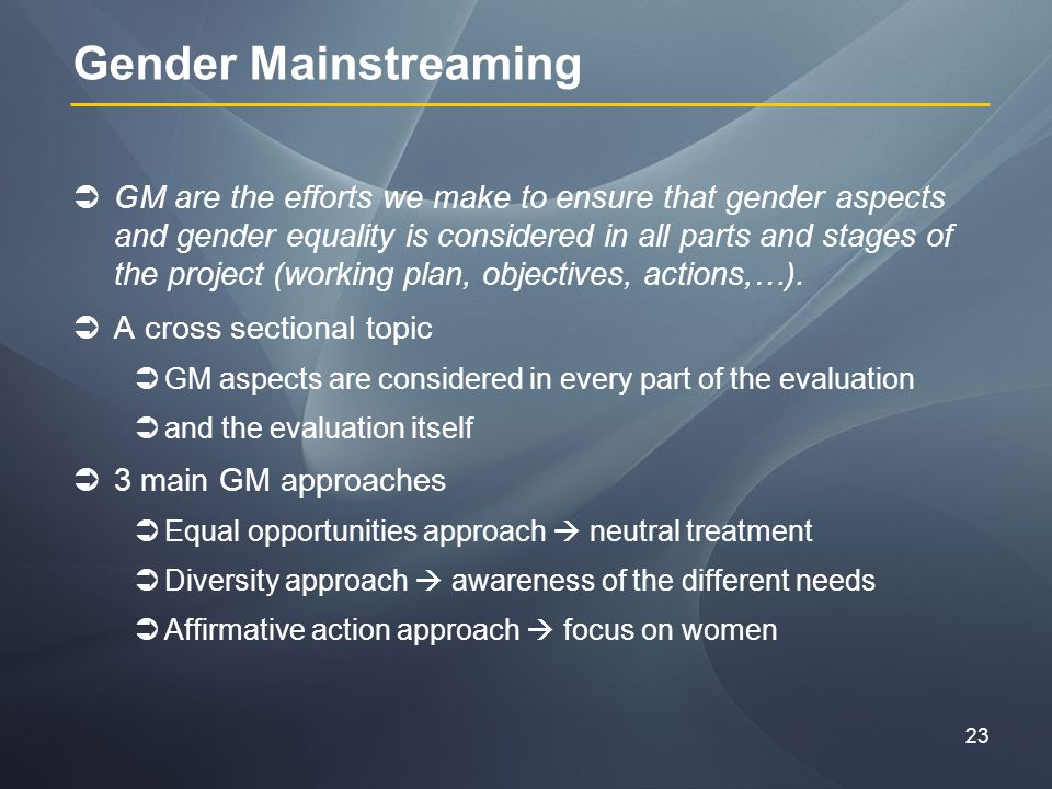 23 Gender Mainstreaming GM are the efforts we make to ensure that gender aspects and gender equality is considered in all parts and stages of the project (working plan, objectives, actions,…).