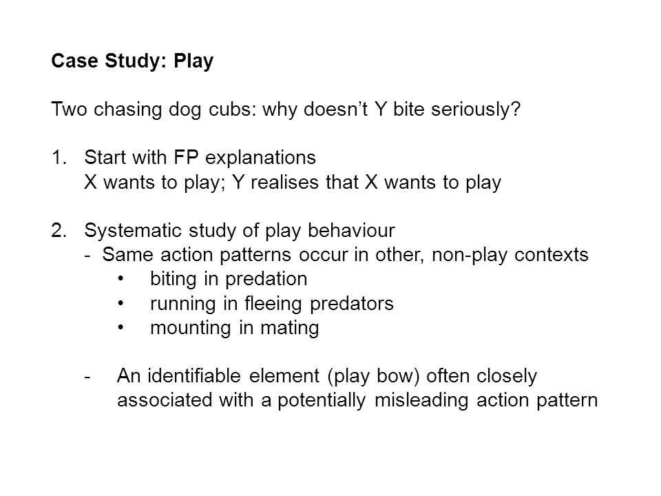 Case Study: Play Two chasing dog cubs: why doesnt Y bite seriously.