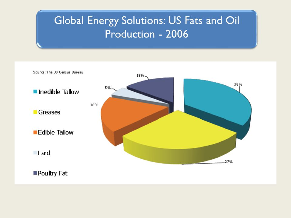 Global Energy Solutions: US Fats and Oil Production - 2006