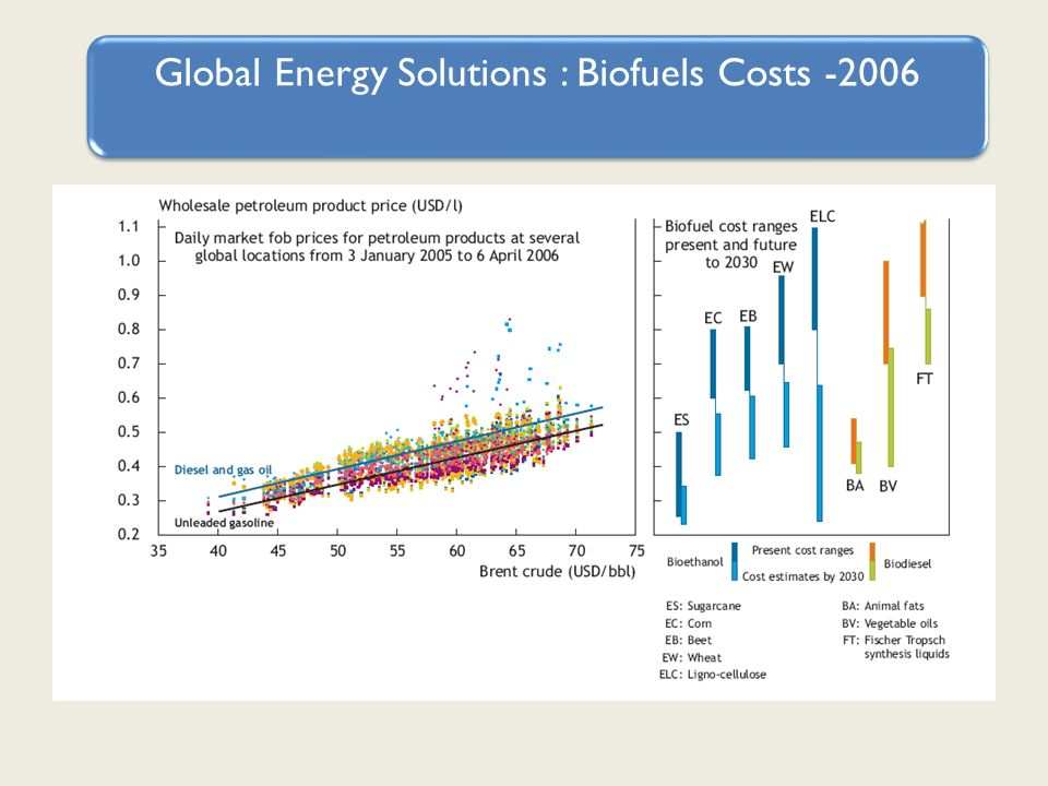 Global Energy Solutions : Biofuels Costs -2006