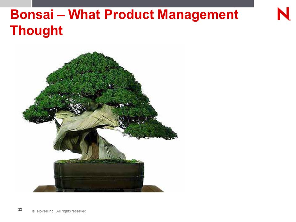 © Novell Inc. All rights reserved 22 Bonsai – What Product Management Thought