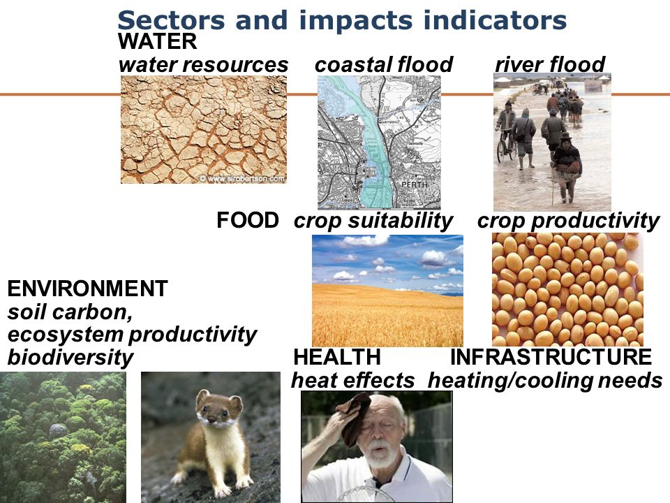 WATER water resources coastal flood river flood FOOD crop suitability crop productivity ENVIRONMENT soil carbon, ecosystem productivity biodiversity HEALTH INFRASTRUCTURE heat effects heating/cooling needs Sectors and impacts indicators