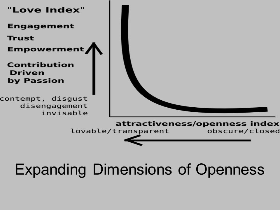 Expanding Dimensions of Openness