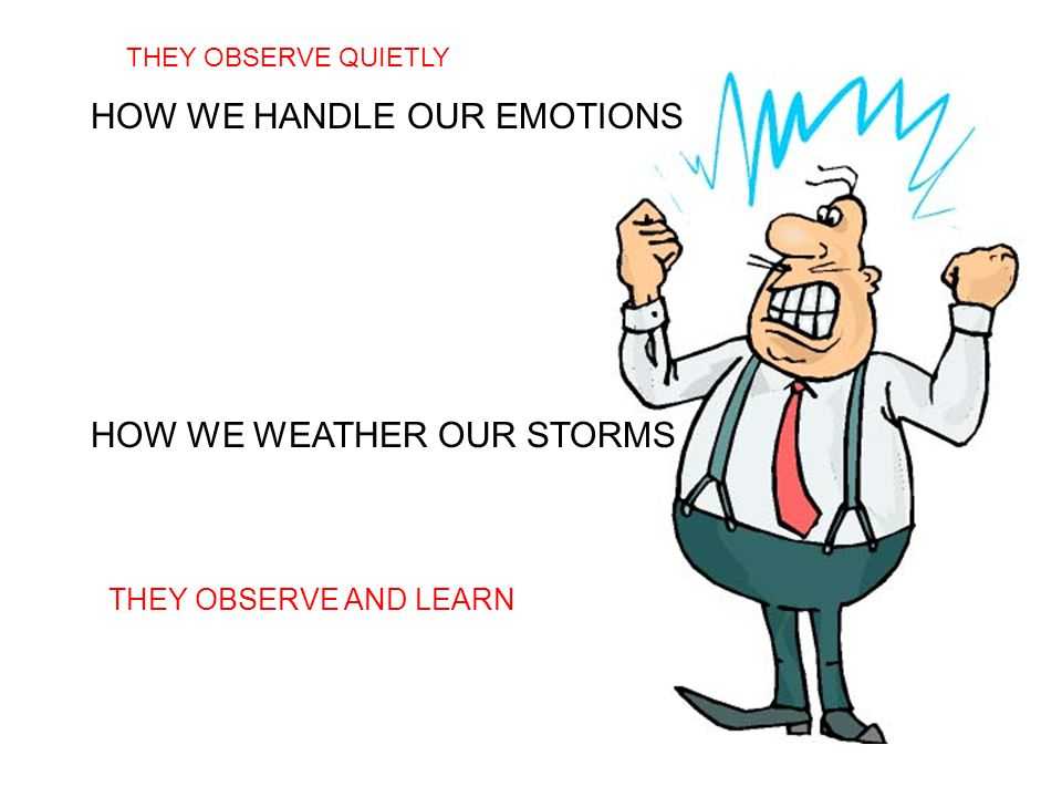 HOW WE HANDLE OUR EMOTIONS HOW WE WEATHER OUR STORMS THEY OBSERVE AND LEARN THEY OBSERVE QUIETLY
