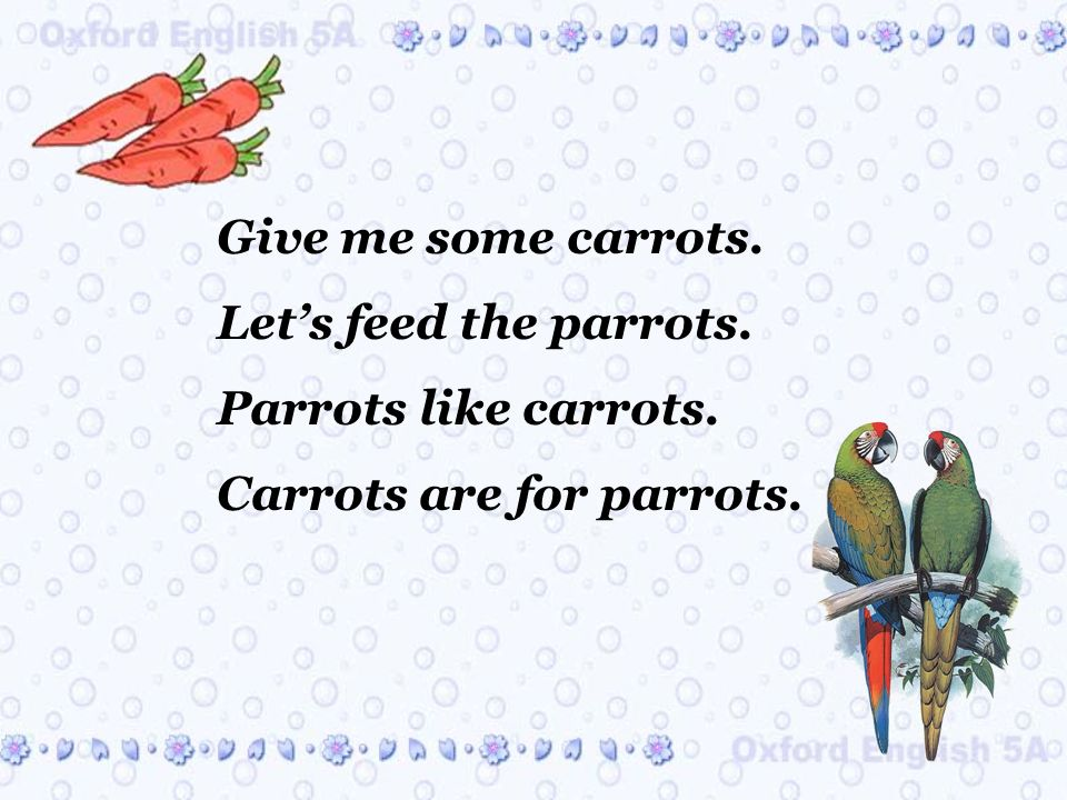 Give me some carrots. Lets feed the parrots. Parrots like carrots. Carrots are for parrots.