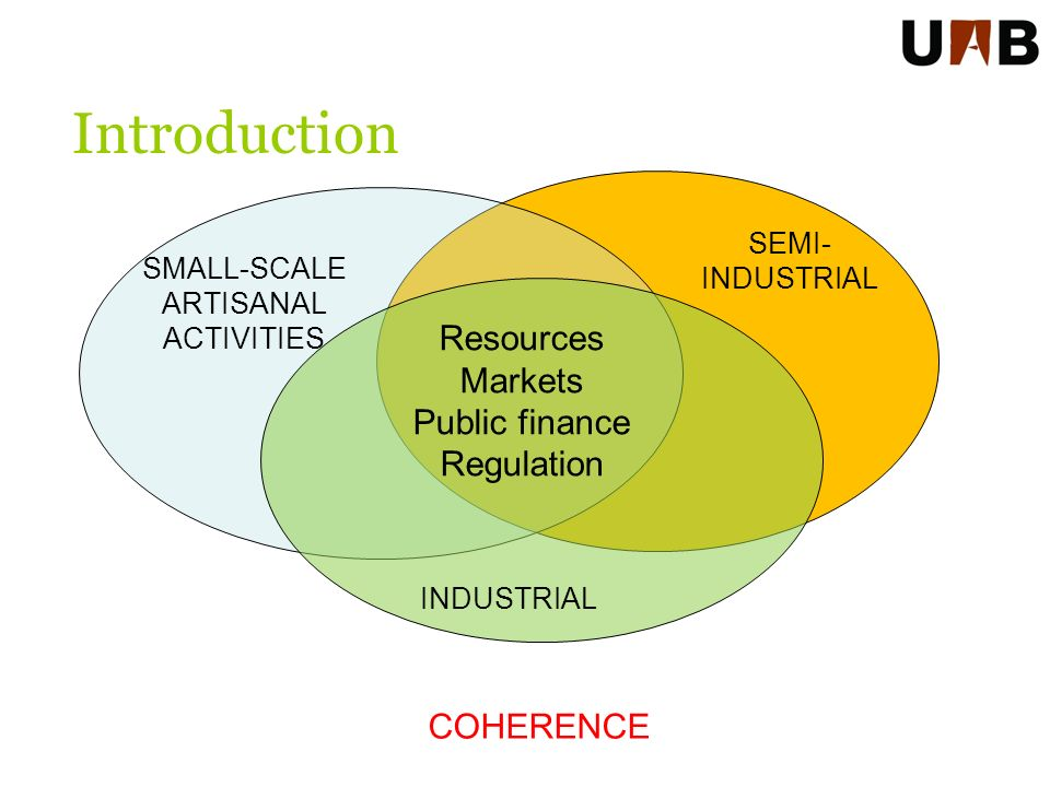 Introduction SEMI- INDUSTRIAL SMALL-SCALE ARTISANAL ACTIVITIES Resources Markets Public finance Regulation INDUSTRIAL COHERENCE