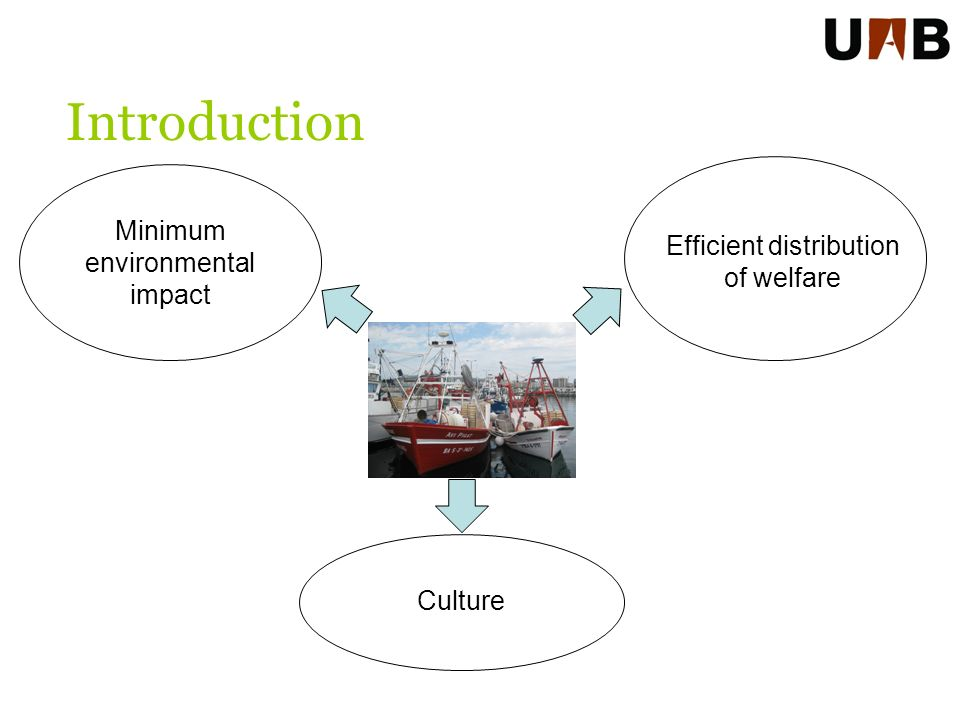 Introduction Efficient distribution of welfare Minimum environmental impact Culture