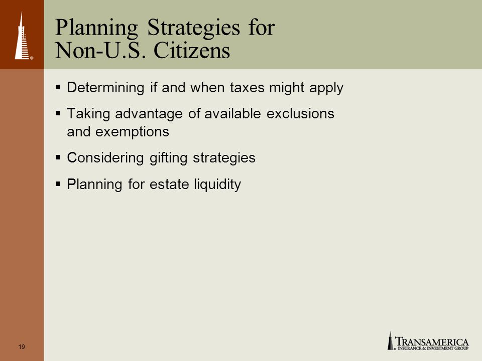 19 Planning Strategies for Non-U.S.