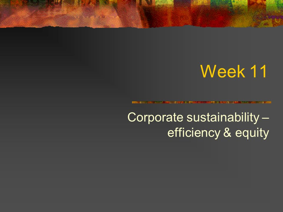 Week 11 Corporate sustainability – efficiency & equity