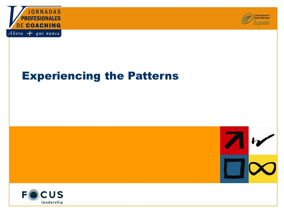 © Focus Leadership LLC 2007, All rights reserved. Experiencing the Patterns