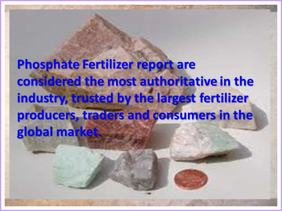 Phosphate Fertilizer report are considered the most authoritative in the industry, trusted by the largest fertilizer producers, traders and consumers in the global market.