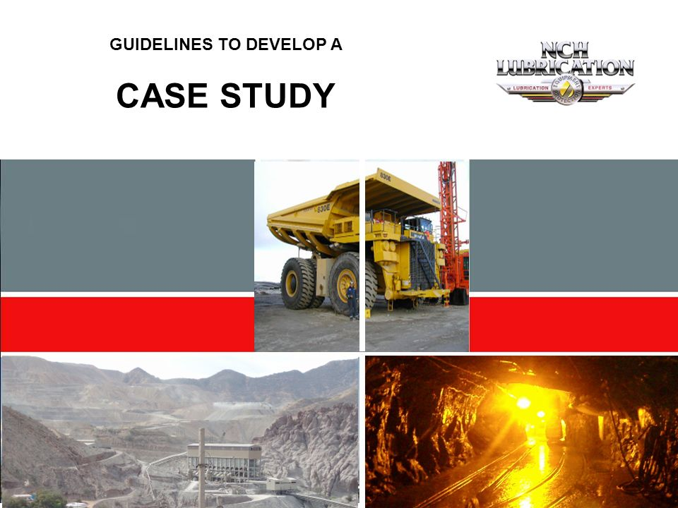 1 GUIDELINES TO DEVELOP A CASE STUDY