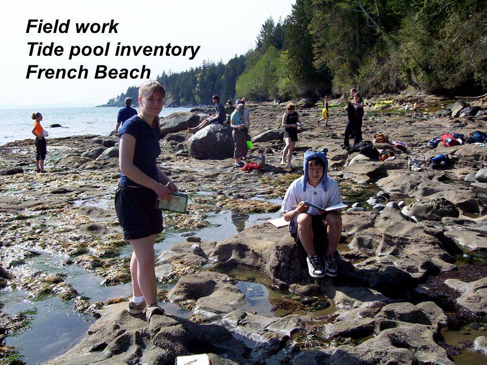 Field work Tide pool inventory French Beach