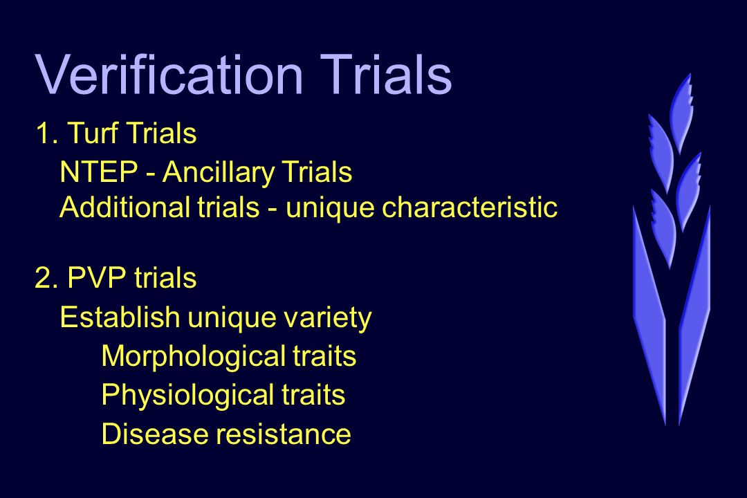 Verification Trials 1.